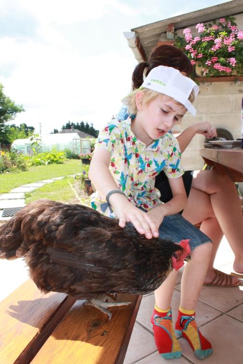 Mon fils et sa poule de compagnie préférée. Oui oui elle vient réclamer à manger.
