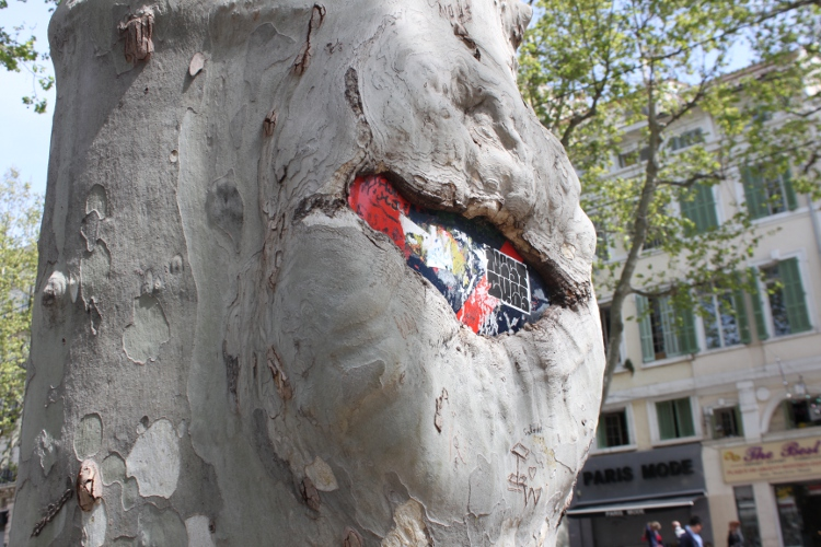 Voilà pourquoi les marseillais sont toujours mal garé! Les arbres mangent les panneaux!
